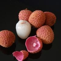 Litchi chinensis